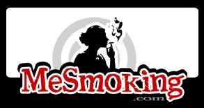 ms_logo3