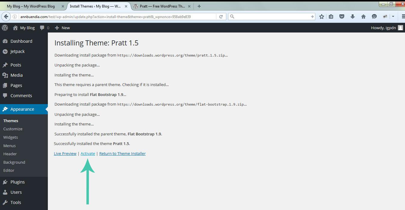 startawebsite_install-theme_admin-pratt-activate
