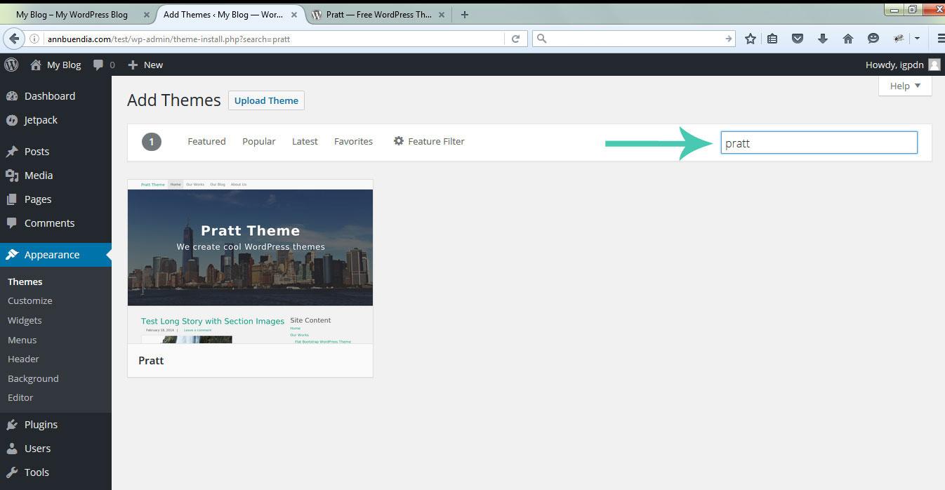 startawebsite_install-theme_admin-type-theme-pratt